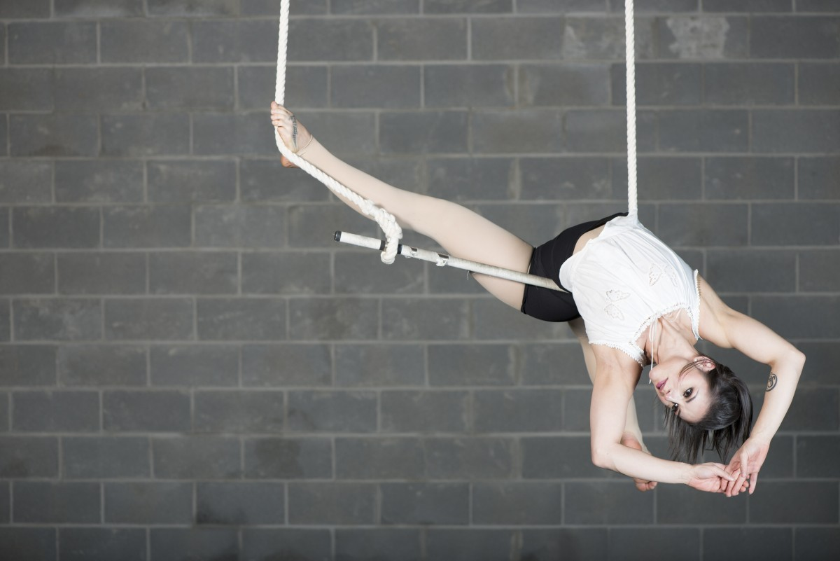 Trapeze Contributions by Guest Artist McKinley Vitale